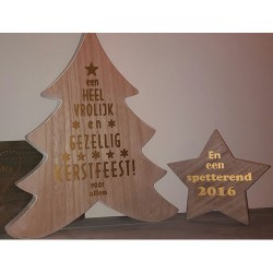 kerst-ster-boom